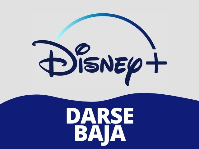 baja de Disney Plus