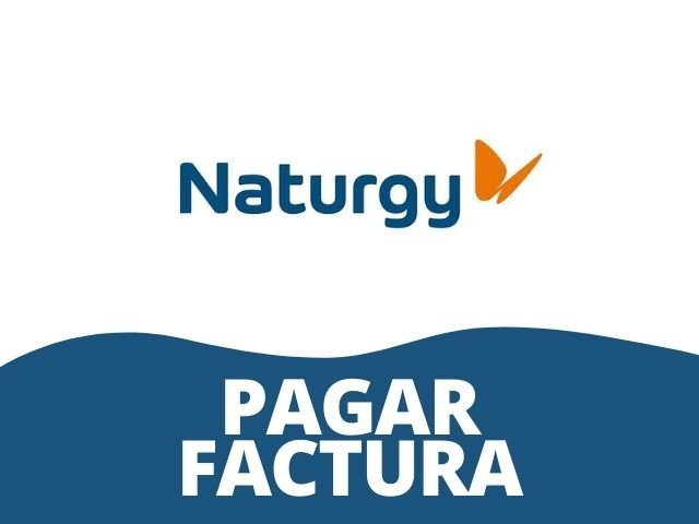 pagar factura de naturgy gas